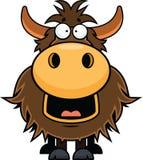 Iaques dos desenhos animados felizes Imagem de Stock