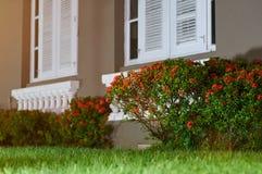 Iarda con i fiori davanti alla casa Immagini Stock Libere da Diritti