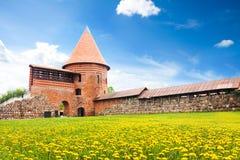 Iarda del castello di Kaunas fotografia stock libera da diritti