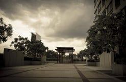 Iarda del giardino sulla costruzione del condominio Immagini Stock Libere da Diritti