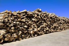 Iarda di legname fotografia stock libera da diritti
