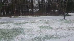 Iarda di Snowy Immagini Stock Libere da Diritti