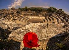 Iasos Antieke Stad Milas Turkije stock foto