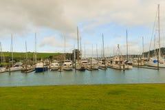 Iate ancorados no porto, porto do golfo, Auckland, Nova Zelândia Fotos de Stock
