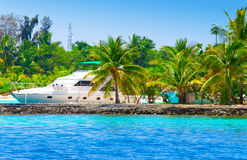 Iate em uma amarração entre palmeiras tropicais Fotografia de Stock