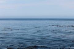 Iate isolado Monterey Ca, imagem de stock