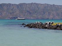 Iate luxuoso em Baja, México Imagem de Stock