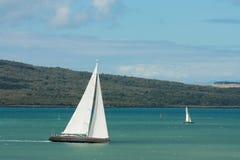 Iate que navegam no golfo de Hauraki Imagens de Stock