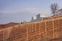 IBA-terrasse de Grossraeschen Photographie stock libre de droits