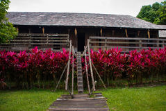 Traditional wooden houses and bushes of red color. Iban longhouse Kuching to Sarawak Culture village. Malaysia. Iban longhouse. Traditional wooden houses and Royalty Free Stock Photography
