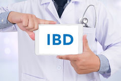 IBD - Inflammatory Bowel Disease. Medical Concept Royalty Free Stock Photo