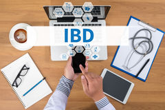 IBD - Inflammatory Bowel Disease. Medical Concept. Doctor working at office desk and using a mobile touch screen phone, computer and medical equipment all royalty free stock photography