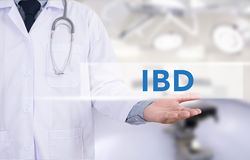 IBD - Inflammatory Bowel Disease. Medical Concept. Medicine doctor hand working stock images