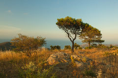Iberia. A view from spains mountains to the Mediterranean Sea Stock Photo