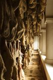 Iberian cured hams stored in a drying room. During the curing process Stock Image
