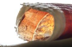 Iberian spanish ham, bellota ham. Stock Photo