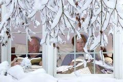 Ibernazione di inverno Fotografie Stock Libere da Diritti