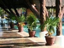 iberostar lindo墨西哥paraiso 库存照片