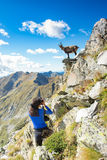 Ibex фотографа hiker девушки в горах Стоковые Фотографии RF