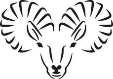 Ibex capra head handdrawn Stock Photos