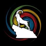 Ibex Royalty Free Stock Photo