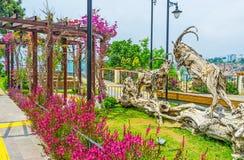 Ibexes среди цветков Стоковые Изображения