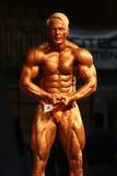 IBFF体型世界冠军 免版税库存照片