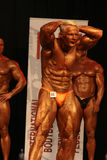 IBFF Bodybuilding world championship Stock Photo