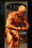 IBFF Bodybuilding world championship. KOPER - NOVEMBER 13: Dean Matosevic participates in IBFF Bodybuilding world championship tall bodybuilder category November Stock Photography