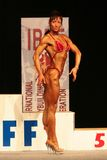 IBFF Bodybuilding world championship. KOPER - NOVEMBER 13: Grof Brigitta participates in IBFF Bodybuilding world championship Miss Figure category on November 13 Stock Image