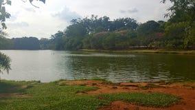 Ibirapuera的圣保罗巴西湖 免版税图库摄影