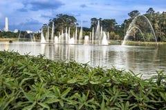 Ibirapuera Park stockfotos