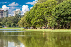 Ibirapuera Park in Sao Paulo, Brazil.  Royalty Free Stock Photo