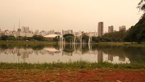 Ibirapuera Park in Sao Paulo stock video