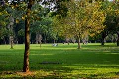 Ibirapuerapark São Paulo April vijfentwintigste Brazilië royalty-vrije stock fotografie