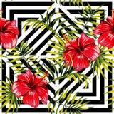 Ibisco e foglie di palma che dipingono modello floreale tropicale, geome Immagine Stock