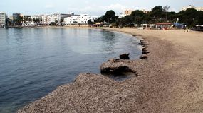 Ibiza, isola mediterranea in Spagna Fotografie Stock
