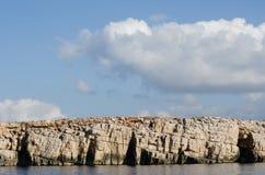 Ibiza shore, Spain Stock Image