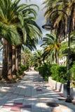 Ibiza, Spain Royalty Free Stock Photo