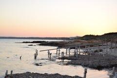 Ibiza strand - sommarsolnedgång arkivbild
