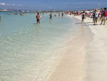 Ibiza. Tourisme nature ibiza Royalty Free Stock Image