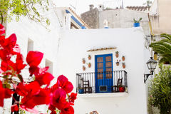 Ibiza white island  corner flowers Royalty Free Stock Image