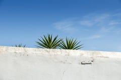 Ibiza white wall Stock Photos