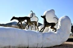 Ibizan hound Stock Image