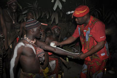 Iboga ritual, Bwiti, Gabon. Bwiti is a religious initiation ceremony performed by the Mitsogo and Fang people of Gabon, using the hallucinogenic rootbark of the Stock Photo