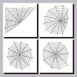 Icône animale effrayante plate graphique de vecteur d'horreur de danger d'insecte de nature de conception de crainte d'arachnide  illustration libre de droits