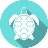 Icône blanche de vecteur de silhouette de tortue Photos stock