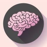 Icône d'esprit humain, symbole d'intellect, étude, étude et éducation illustration libre de droits