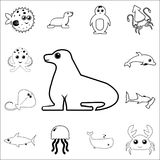 Icône de joint Ensemble détaillé d'icônes d'ensemble d'animal de mer Icône de la meilleure qualité de conception graphique de qua Photos libres de droits