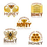 Icône de miel avec l'abeille, le nid d'abeilles, la ruche et le plongeur illustration stock